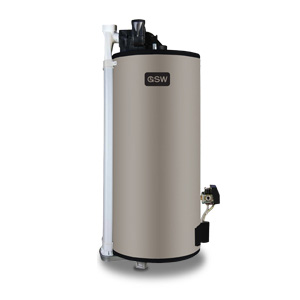 GSW Power Direct Vent water heater
